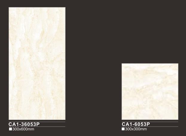 contoh keramik kamar mandi CA1-36053P
